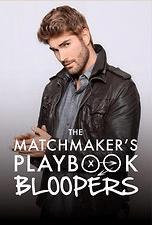 THE MATCHMAKER'S PLAYBOOK | PASSIONFLIX | THEREVIEWBOOKS.COM.BR